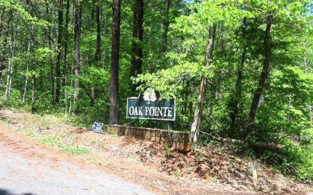 0 Oak Point #6, Hiawassee, GA 30546