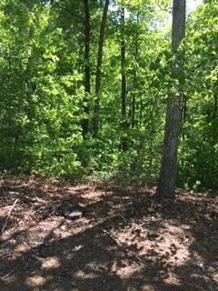 0 Rooks Rd #LOT 23, Mineral Bluff, GA 30559