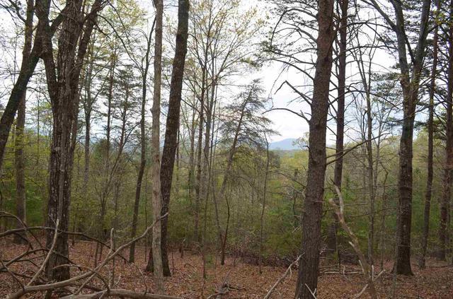 0 Warnock Mtn #7, Blairsville, GA 30512