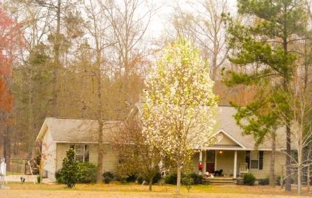 157 Butler Rd, Milledgeville, GA
