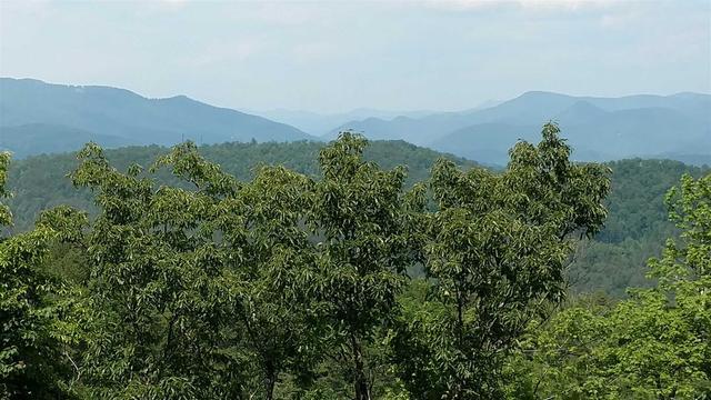 0 The Ridge At Long Mtn #40-49, Lakemont, GA 30552