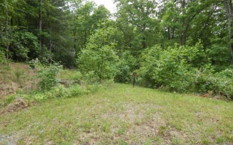 0 Wolfpen Gap #12, Hiawassee, GA 30546