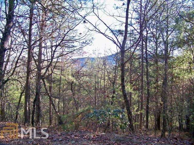 14 Rabun Bluffs, Lakemont, GA 30552