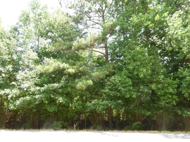 0 Highway 279 And Mckown Rd #30+-AC, Fayetteville, GA 30214
