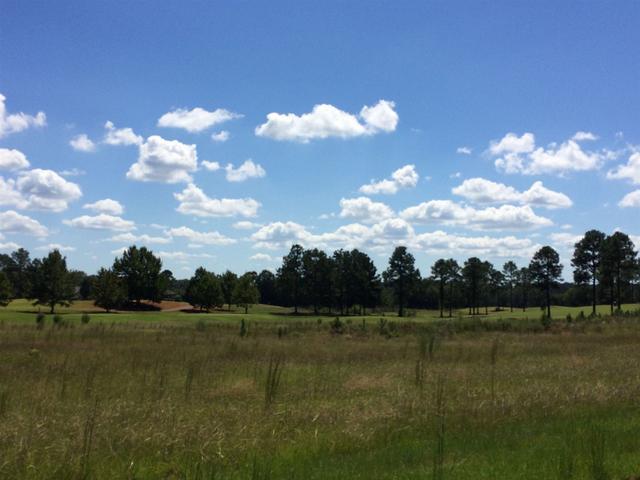 24 Crabapple, Hawkinsville, GA 31036