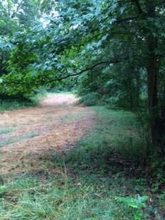 0 Weems Road, Locust Grove, GA 30248