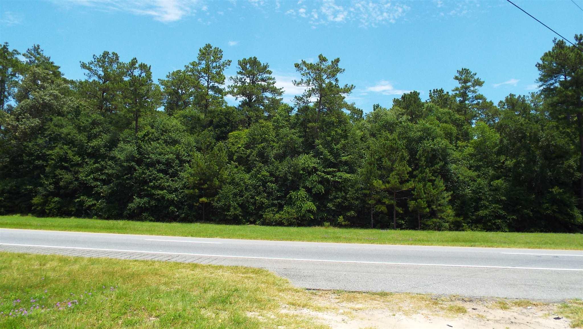 0 Highway 21, Springfield, GA 31329