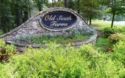 0 Old South Farms #8, Ellijay, GA 30540