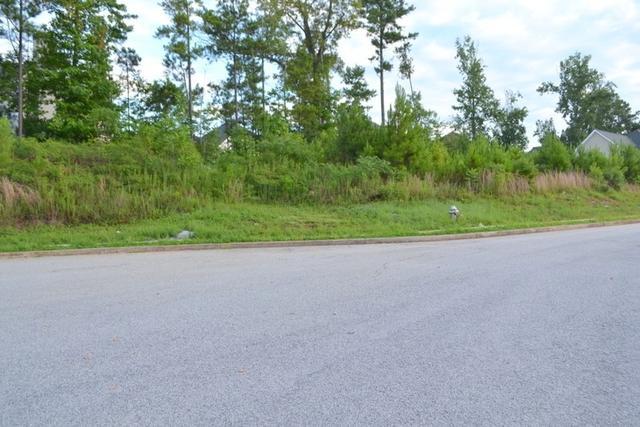 4409 Mill Grove Ter, Douglasville, GA 30135