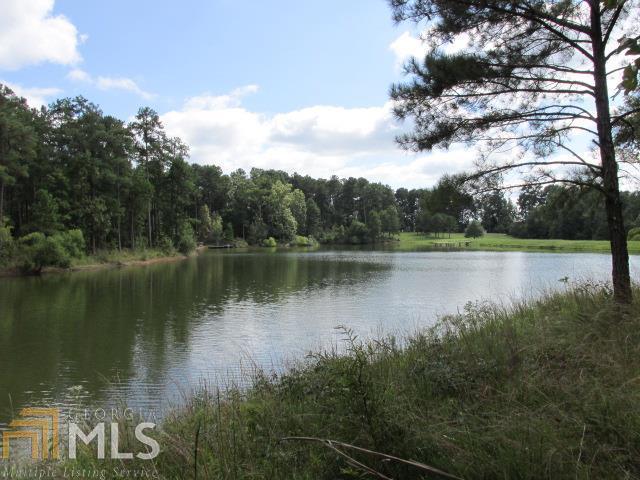 1020 Big Water Pt, Greensboro, GA 30642