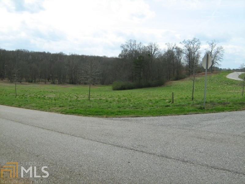 0 Farm Hill Drive #10, Clarkesville, GA 30523