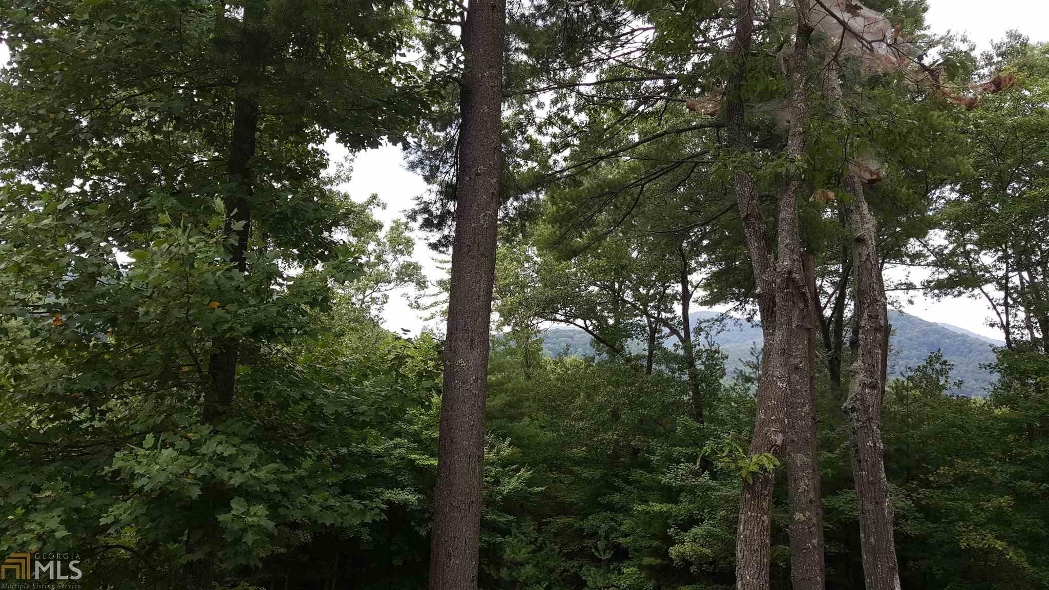 0 Big Creek Road #4+AC, Blue Ridge, GA 30513