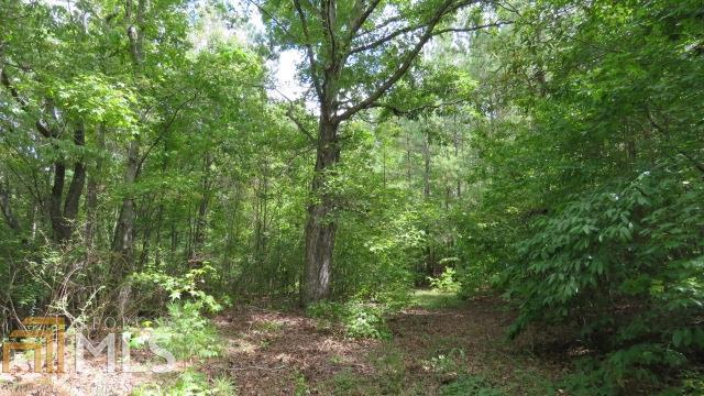 0 Forrest Rd #37AC, Greenville, GA 30222