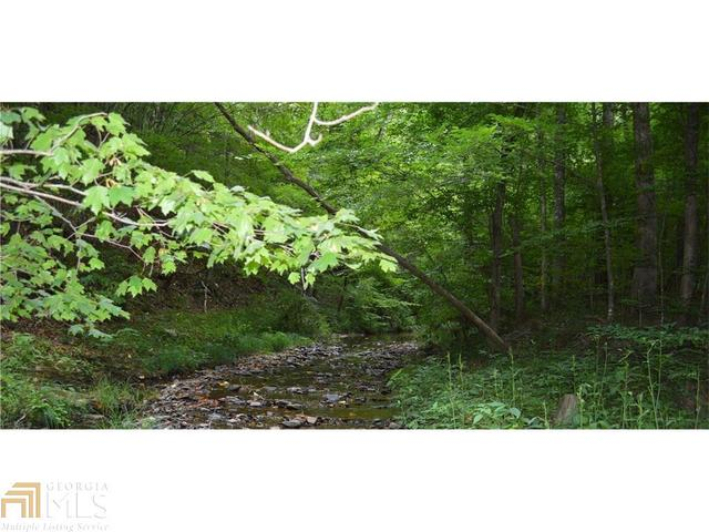 1634 Carmen Way #2.61 AC, Ellijay, GA 30540