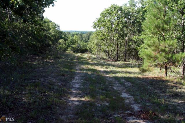 0 Deer Creek Rd, Ellaville, GA 31806