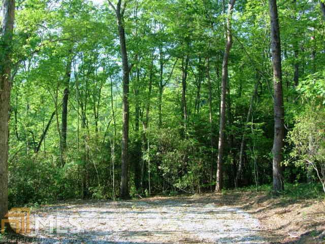 36 Liberty Ridge Lane, Tiger, GA 30576
