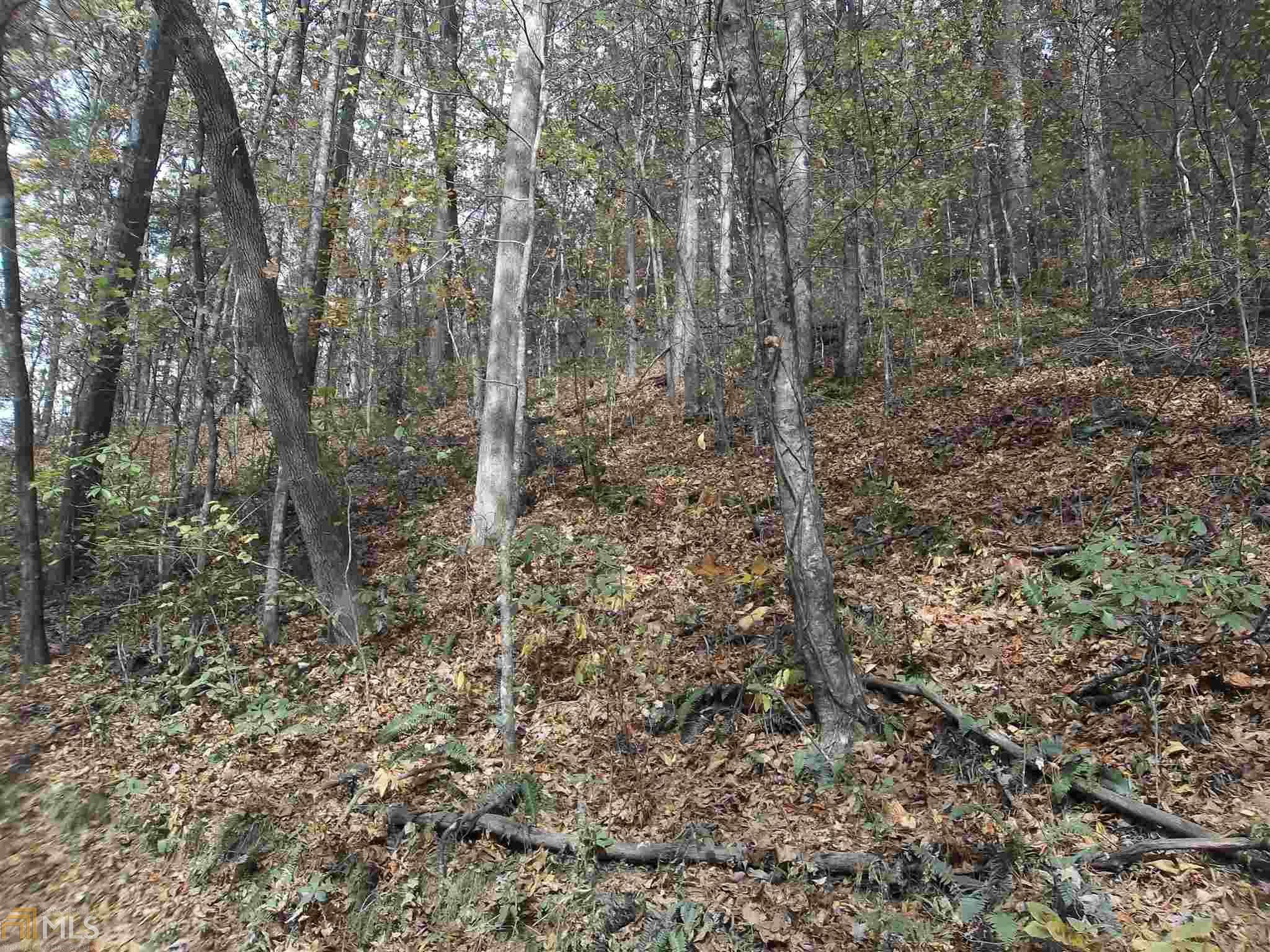 1 Etowah Trail, Dahlonega, GA 30533