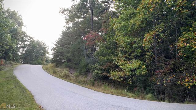 1605 Scarlet Pippin #LOT 5, Clarkesville, GA 30523