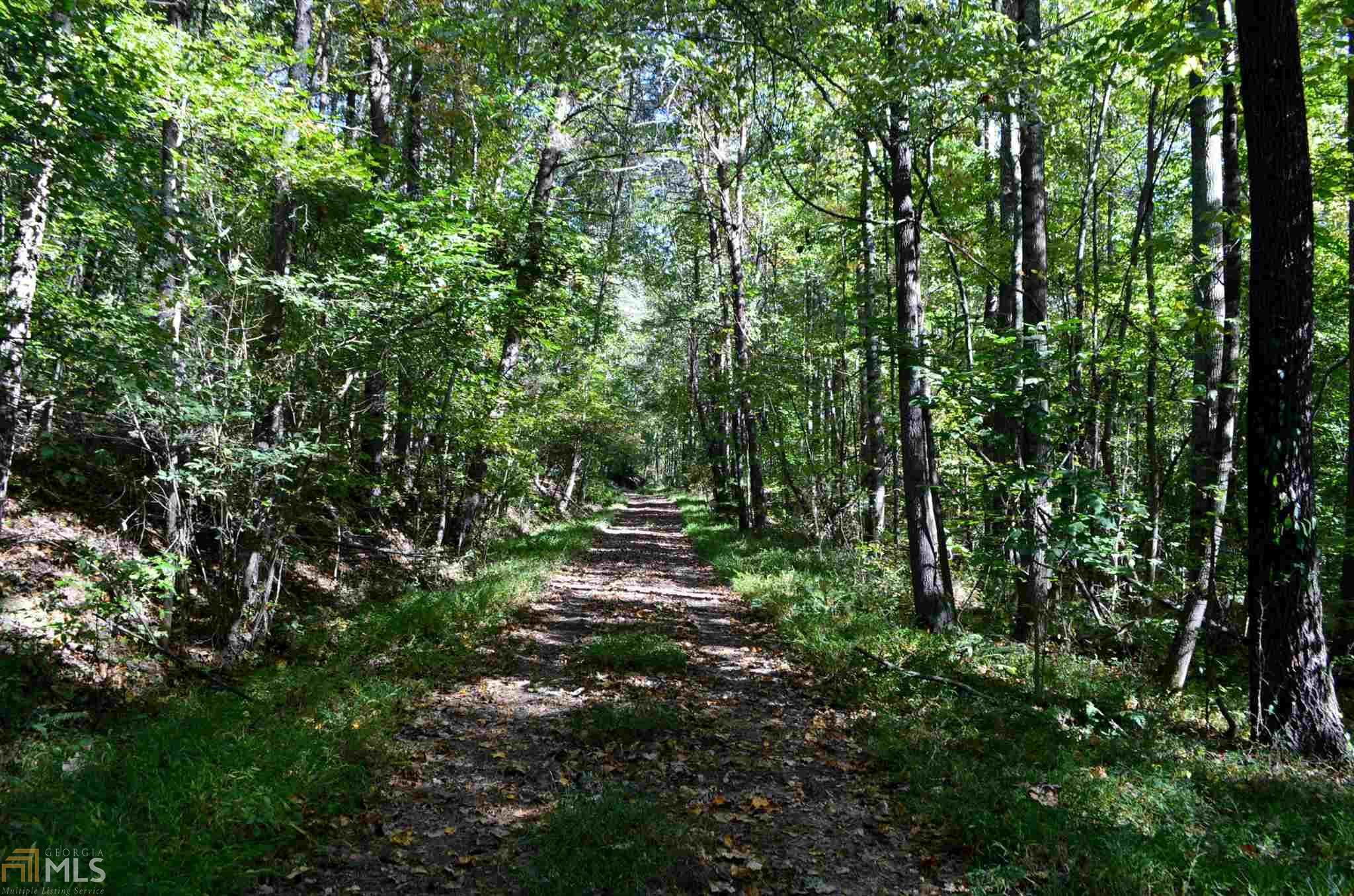 0 Henry Turner Trail #1, Ball Ground, GA 30107