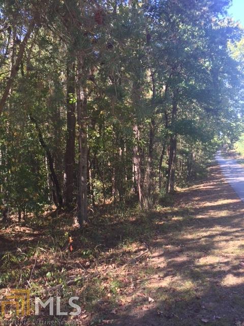 93 Mountain View Road, Lavonia, GA 30553