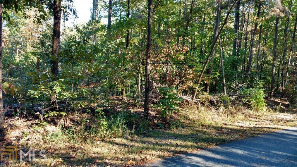 0 Brookwood Path, Dahlonega, GA 30533