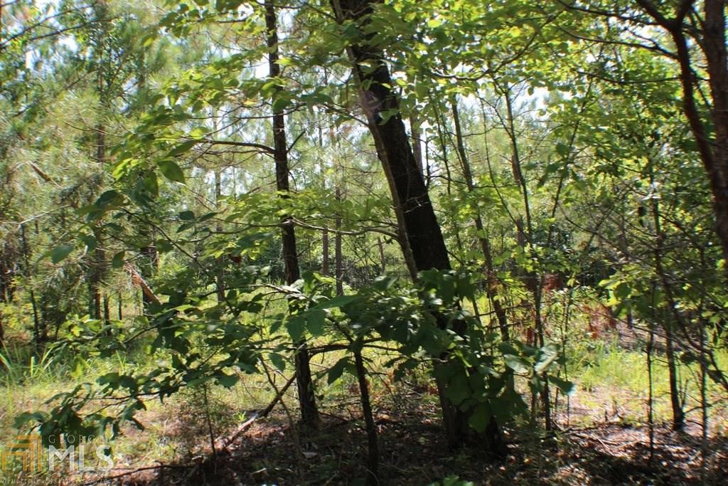 0 Mountain Home Road #31AC, Cedartown, GA 30125