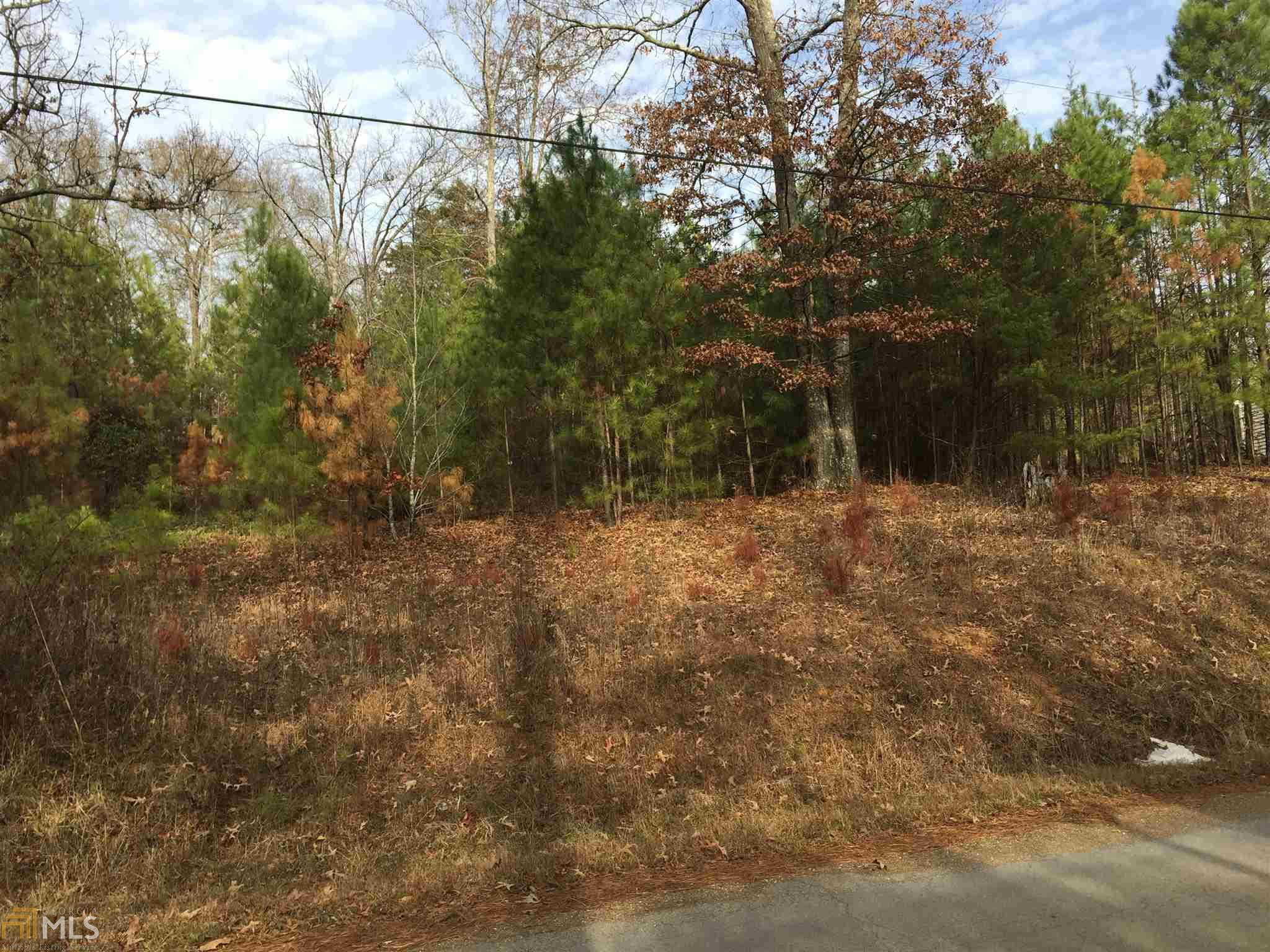 0 Parrish Road, Cedartown, GA 30125