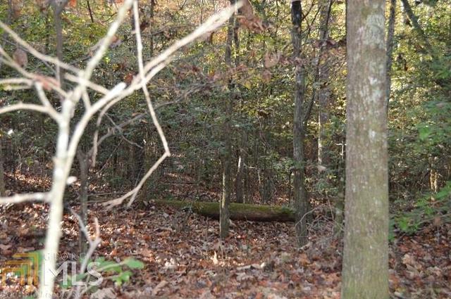0 Twisting Ridge Trl, Demorest, GA 30535