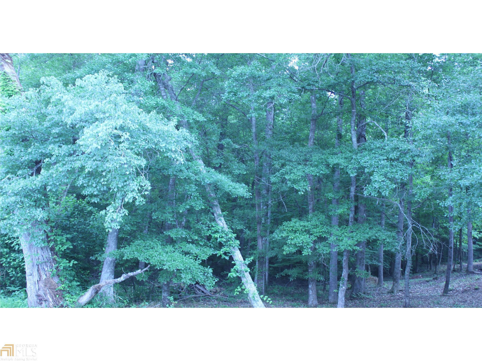 690 Raven Road #152, Monticello, GA 31064