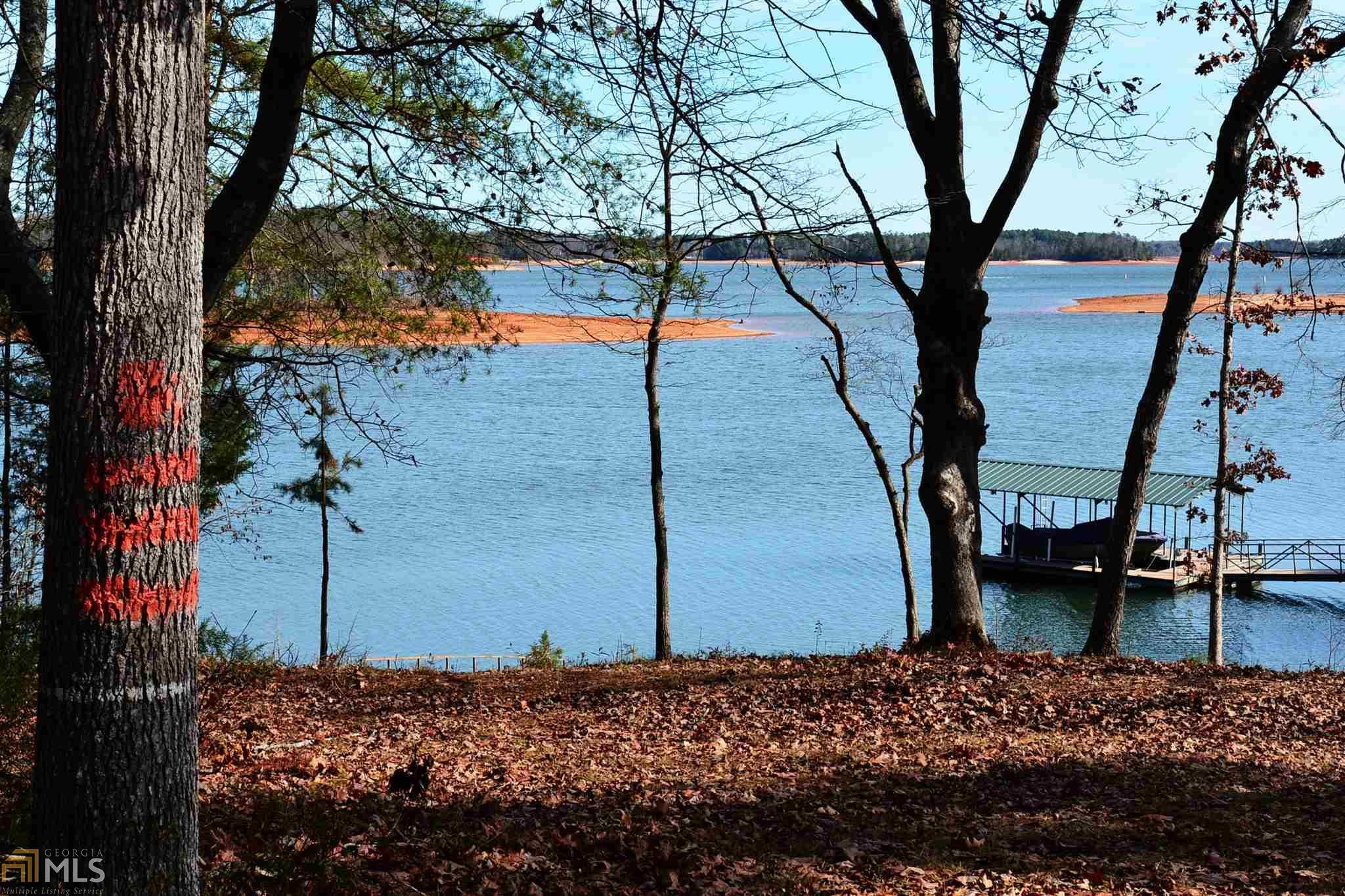 0 Reed Creek Hwy, Hartwell, GA 30643