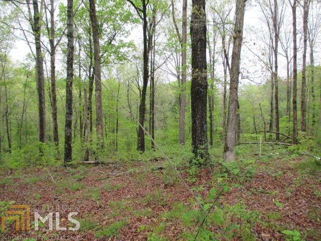 4536 Fawn Path, Gainesville, GA 30506