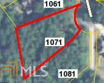 1071 Spyglass Hl, Greensboro, GA 30642