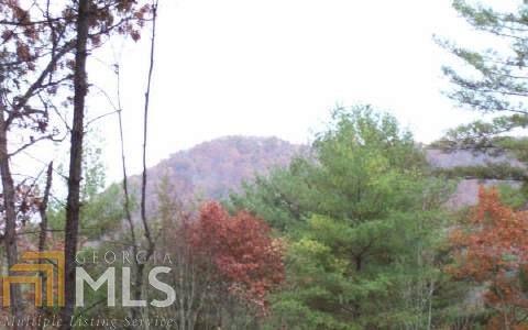 10 Raven Rdg, Mineral Bluff, GA 30559