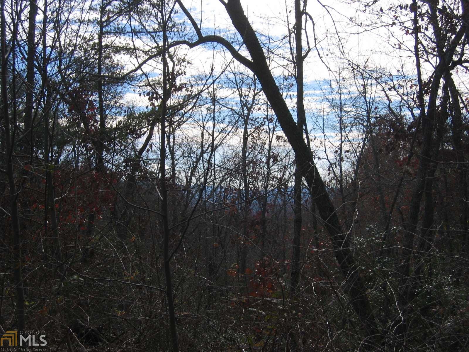 0 Pettit Ridge Road, Ellijay, GA 30536