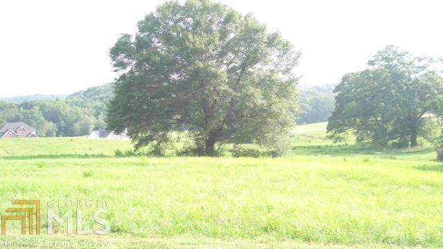 0 Middle Fork Ln, Carnesville, GA 30521