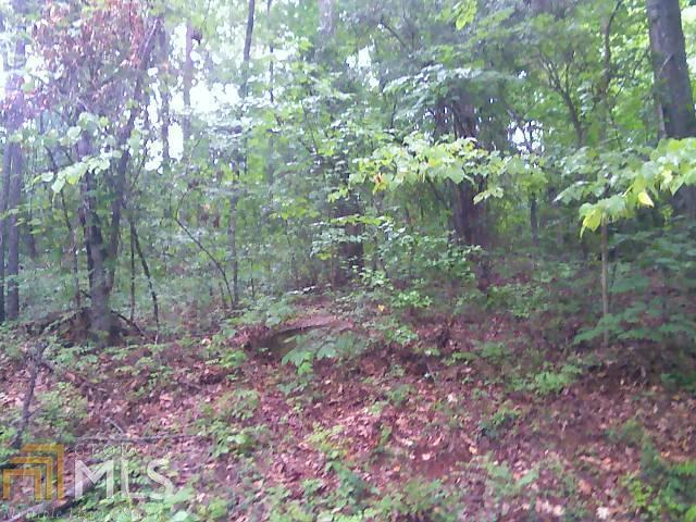 0 Turtle Cove Trailway #LOT 72, Monticello, GA 31064
