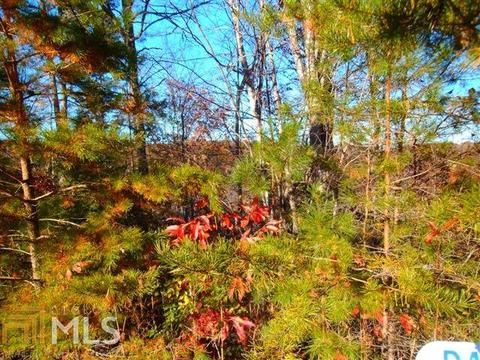 0 Mountain Tops, Blue Ridge, GA 30513