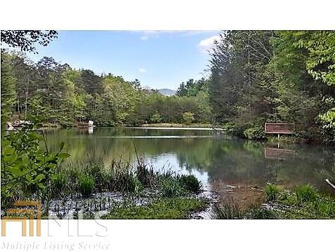 0 Cherry Ct, Cherry Log, GA 30522