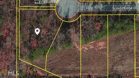 205 Scouts Ridge Dr, Covington, GA 30016