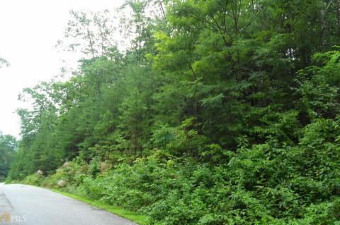 663 Mountain Sweet, Clarkesville, GA 30523