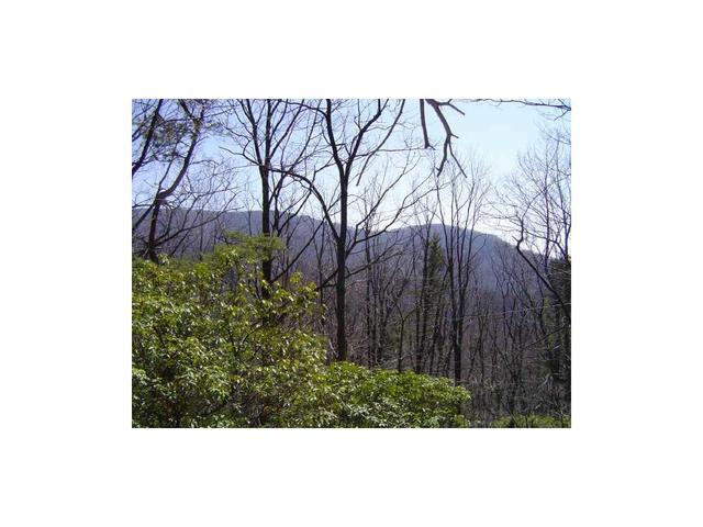 4442 Bee Tree Ridge Dr, Jasper, GA 30143