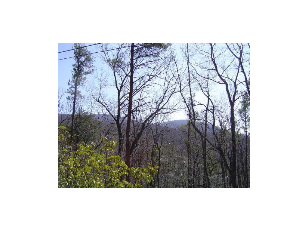 4442 Bee Tree Ridge Drive, Jasper, GA 30143