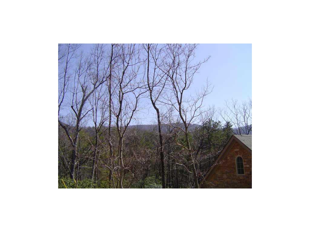 4446 Bee Tree Ridge Drive, Jasper, GA 30143