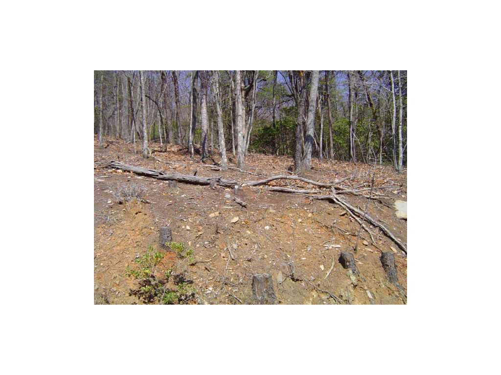 4 Sharp Top Mountain Trail ## a, Jasper, GA 30143