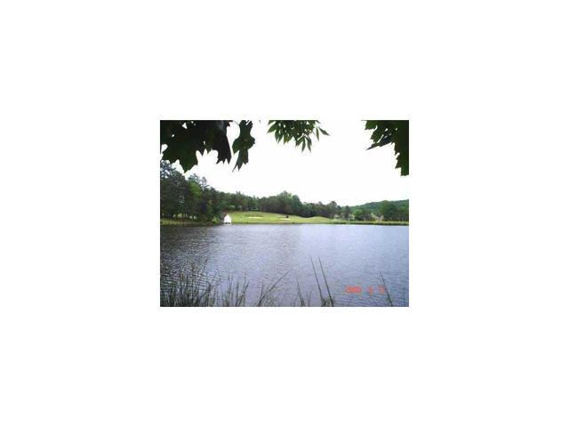 4610 Blakeford Ct, Flowery Branch, GA 30542