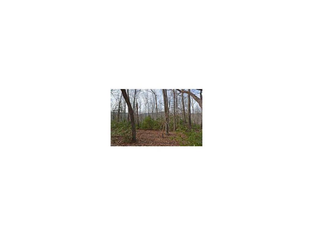 3562 Bobcat Ridge Drive #3562, Jasper, GA 30143
