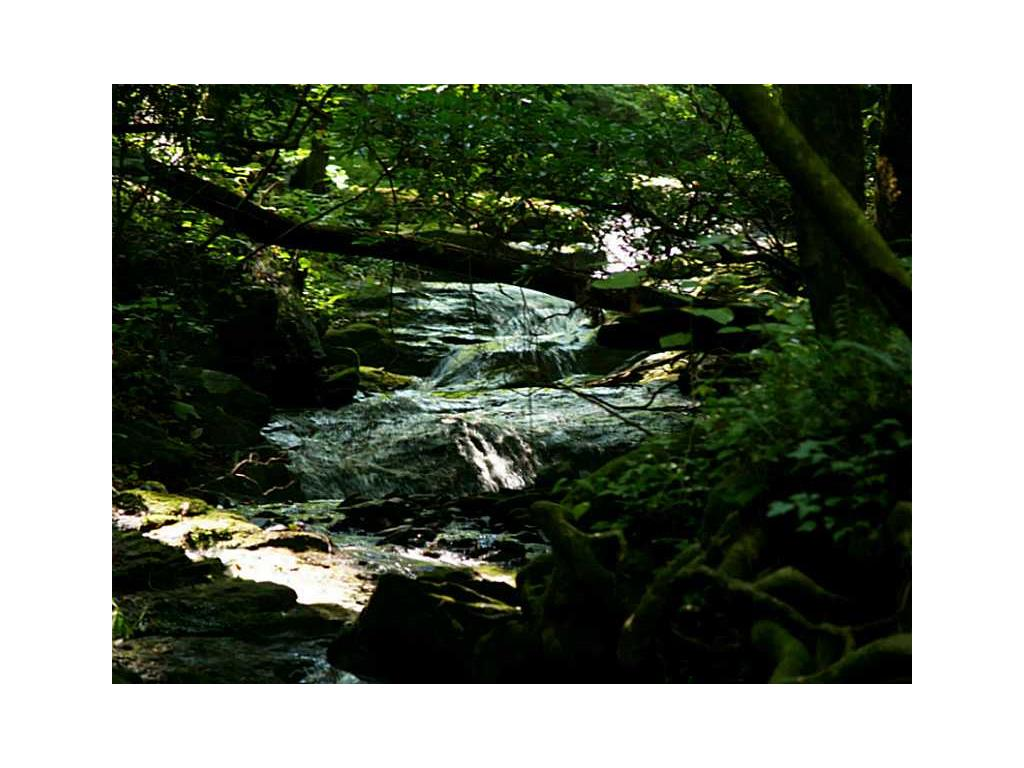 165 Cold Stream, Jasper, GA 30143
