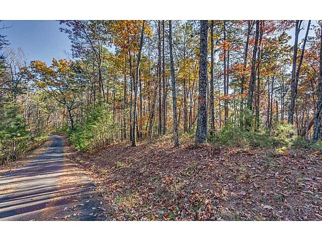 Lot 10 NW Meadowlands Drive, Talking Rock, GA 30175