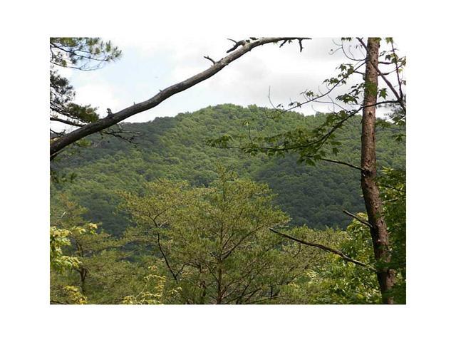 Lot 34 Laurel Creek Trail, Cherrylog, GA 30522