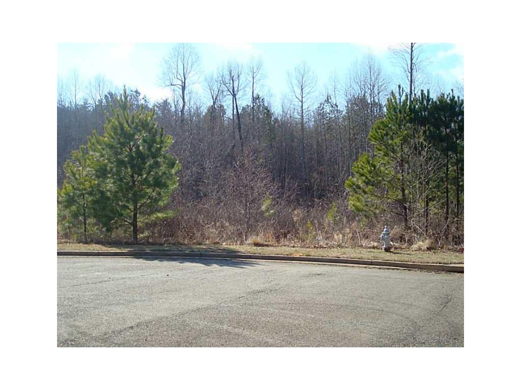 Lot 28 Village Creek Drive, Jasper, GA 30143